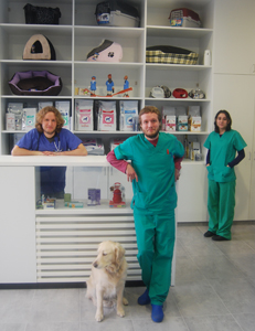 Veterinaria arealonga pernas varela arquitectos - Diseno de clinicas veterinarias ...
